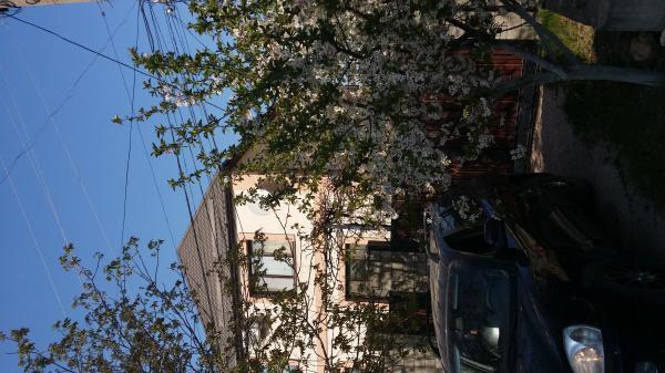 Симферополь купить дом в станице Краснодарского края - фото, станицы Краснодарского края - дома
