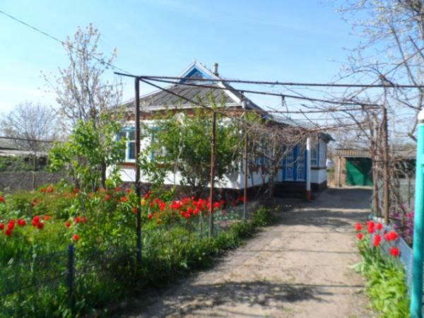Больница в солнцево парке