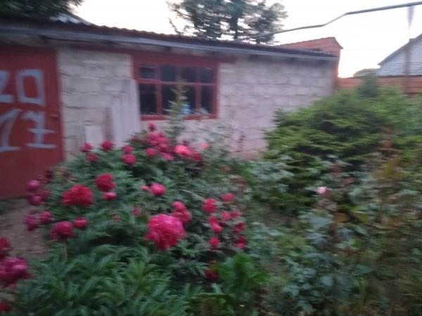 ст. Советская купить дом в станице Краснодарского края - фото, станицы Краснодарского края - дома